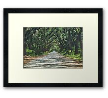 Take a Stroll with me in the Shade of the Live Oak Framed Print