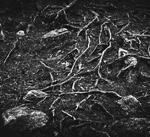 Vascular (iPhone wallet) by Matti Ollikainen