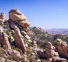 Who Does This Rock Look Like? by Robert Kelch, M.D.