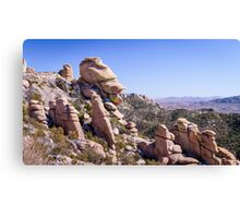 Who Does This Rock Look Like? Canvas Print