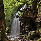 Cave Falls Side by Tim Holmes