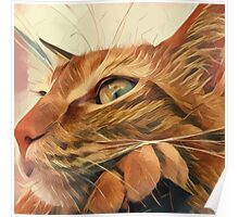 The red cat Socca Poster