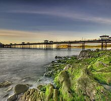 Mossy Rocks At Sunset by Darren Wilkes