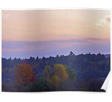 lavender daze Poster