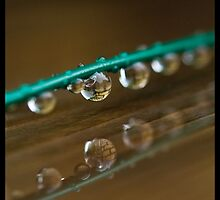 Droplets by Els Steutel