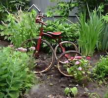 Antique Bike in a Garden by vigor