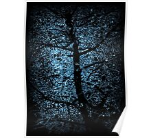 black tree on blue light Poster