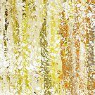 Splish Splash Olives in Sun by Marilyn Cornwell
