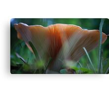 Under the Mushroom Canvas Print
