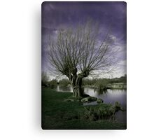 The Whomping Willow Canvas Print