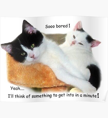 Sooo Bored! Poster