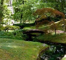 Japanese Garden - Maymont Park by ctheworld