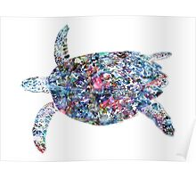 Tropical Tortoise Poster