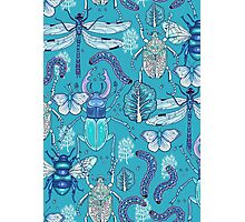 happy frozen blue bugs Photographic Print