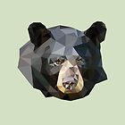 LP Bear by Alice Protin