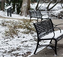 Snowy Benches By Creek by William Helms
