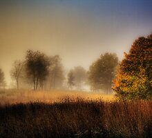 Misty Morning Sunrise by Roger Passman