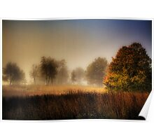 Misty Morning Sunrise Poster