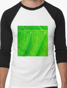 Macro shot of green leaf, nature pattern background Men's Baseball ¾ T-Shirt