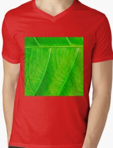 Macro shot of green leaf, nature pattern background Mens V-Neck T-Shirt