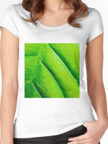 Macro shot of green leaf, nature pattern background Women's Fitted Scoop T-Shirt