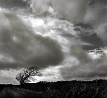 Ridgeway Sky by Mark Haynes Photography