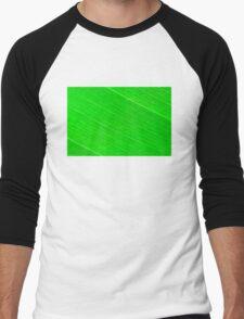 Macro shot of green leaf, nature pattern background Men's Baseball ¾ T-Shirt