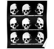 Crypt Skulls Poster