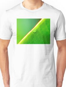 Macro shot of green leaf, nature pattern background Unisex T-Shirt