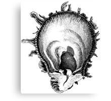 Brain Bug is that You? Canvas Print