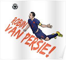 Robin Poster