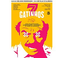 Os 7 Gatinhos Photographic Print