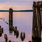 Old Docks by Theodore Black