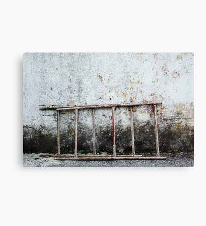 decayed wall with ladder Canvas Print