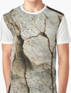 Cracked  Graphic T-Shirt