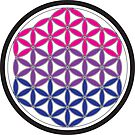 bisexual sacred geometry by chromatosis