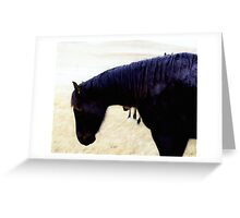 horse in the rain Greeting Card