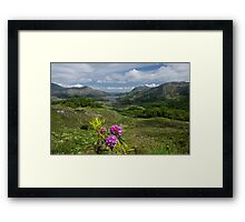 Ladies View Co. Kerry Framed Print