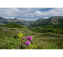Ladies View Co. Kerry Photographic Print