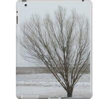 Winter Willow Scene iPad Case/Skin
