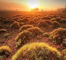 Gawler Ranges sunrise by Kevin McGennan