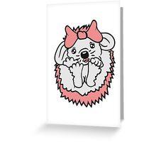 schwarz 3 süße kleine niedliche igel wandern team freunde muster design  Greeting Card