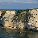 Sympathy for Old Harry by RedHillDigital