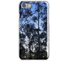 dull sunrise  iPhone Case/Skin
