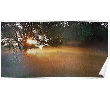 Summer Meadow No. 1 Poster