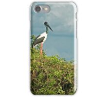 Jabiru iPhone Case/Skin