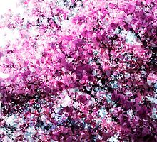 Cherry  Blossoms by wearehalfhill