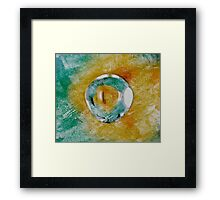 Reptile Eye Framed Print