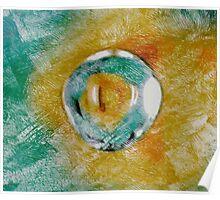 Reptile Eye Poster