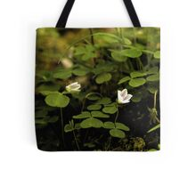 Wood Sorrel, Ness Woods, County Derry Tote Bag